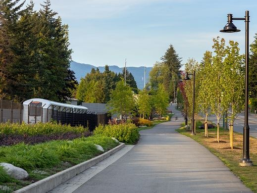 Lougheed Burquitlam Neighbourhood